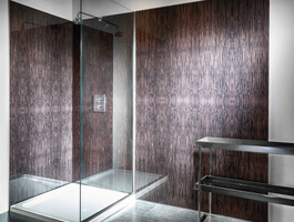 Shower with glass panel wall